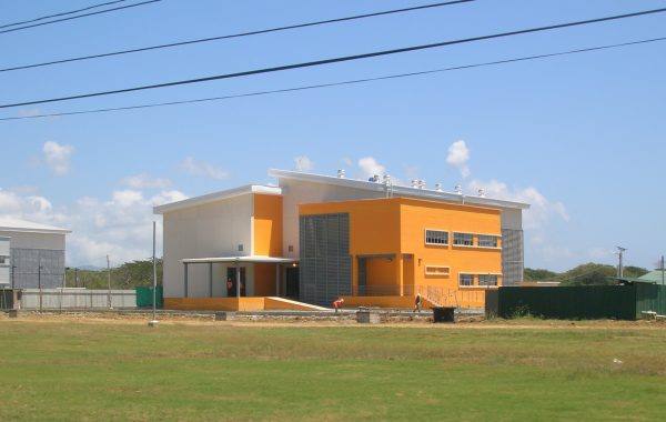 COVE FACTORY SHELL TWO TOBAGO